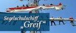 teaser_sss_greif